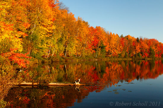 Autumn Colors - Michigan Landscape Photography